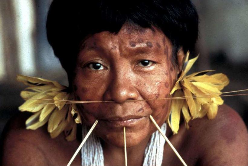 Indigena latinoamericano