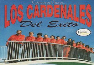 Grupo gaitero Cardenales del éxito